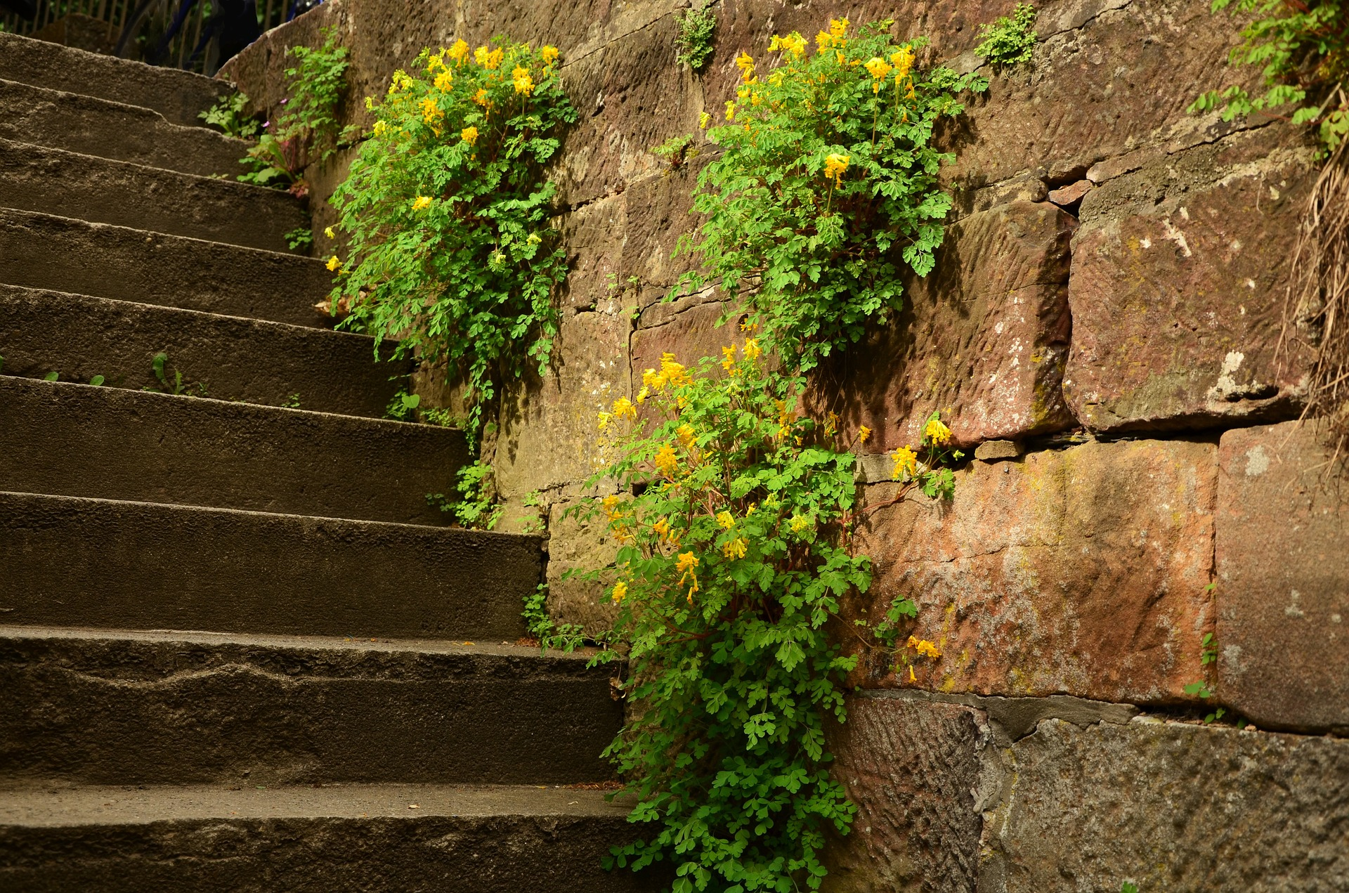 How Safe Are Your Masonry Steps?